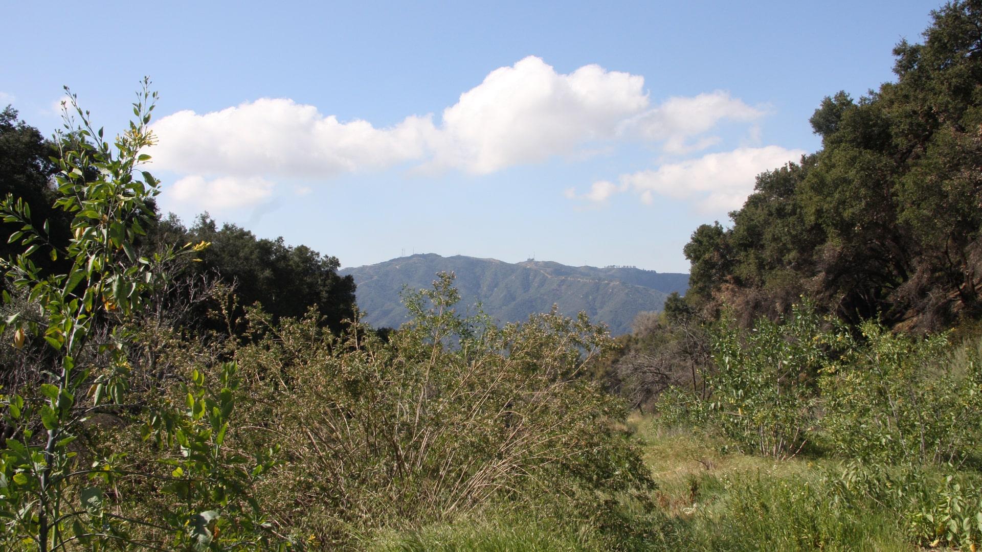 Field Slider Image