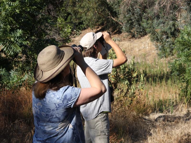 Birders at Rosemont Preserve