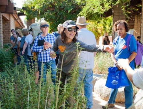 Cassy Aoyagi Leading A Tour at Rosemont Preserve